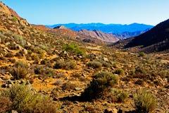 Valle irregolare con le montagne blu dietro Fotografie Stock