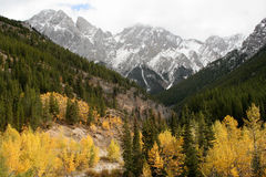 Valle Kananaskis Alberta del otoño Fotografía de archivo