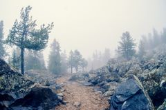 Valle mistica Fotografia Stock