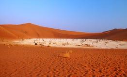 Valle muerto en Namibia Foto de archivo