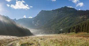 Valle nebbiosa in montagne Fotografia Stock Libera da Diritti