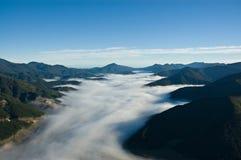 Valle nebbiosa nei suoni di Marlborough, Nuova Zelanda Immagini Stock