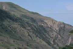 Valle nelle montagne basse Immagini Stock Libere da Diritti
