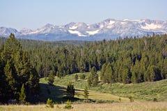 Valle norteño de Colorado fotografía de archivo