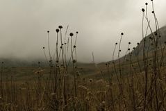 Valle nublado en las montañas Fotografía de archivo libre de regalías