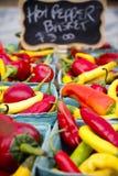 Valle organica di Okanagan del mercato del ` s dell'agricoltore di Penticton Immagine Stock Libera da Diritti
