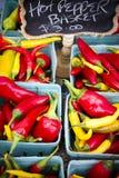 Valle organica di Okanagan del mercato del ` s dell'agricoltore di Penticton Immagine Stock
