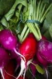 Valle organica di Okanagan del mercato del ` s dell'agricoltore di Penticton Immagini Stock