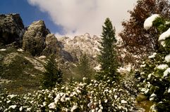 valle Parco narodny di Tatransky Vysoke tatry slovakia fotografie stock
