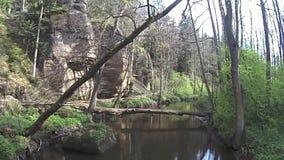 Valle Peklo de la tarde en naturaleza checa de la primavera con cala robecsky del potok metrajes