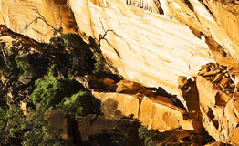 Valle in re Canyon Fotografia Stock Libera da Diritti