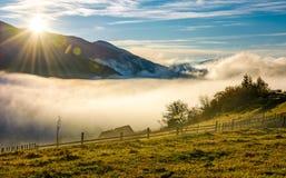 Valle rurale ad alba nebbiosa in autunno Immagine Stock Libera da Diritti