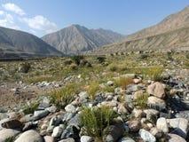 Valle salvaje de las montañas de Kirguistán imagen de archivo libre de regalías