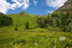 Valle soleado hermoso entre las montañas con las nubes enormes Foto de archivo