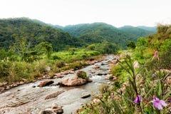 Valle Tailandia Fotografía de archivo libre de regalías