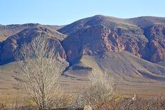 valle in terra della montagna dell'albero isolata Immagini Stock