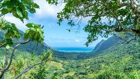 Valle tropical de Kaaawa imágenes de archivo libres de regalías