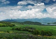 Valle verde Fotografía de archivo libre de regalías