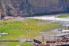 Valle verde foto de archivo