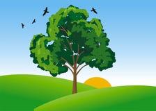 Valle verde stock de ilustración