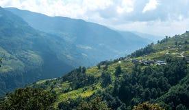 Valle verde con i terrazzi del riso, circuito di Annapurna, Nepal Fotografia Stock Libera da Diritti