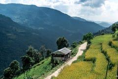 Valle verde con i terrazzi del riso, circuito di Annapurna, Nepal Immagine Stock