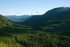 Valle verde de la montaña Imagenes de archivo