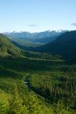 Valle verde della montagna Immagini Stock Libere da Diritti