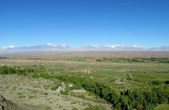 Valle verde della montagna delle Ande in Argentina Fotografia Stock