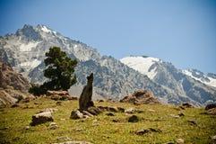 Valle verde e montagne Fotografia Stock Libera da Diritti
