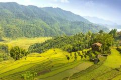 Valle verde hermoso y sola casa de la roca en una colina imagen de archivo