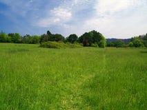 Valle verde iii Foto de archivo libre de regalías