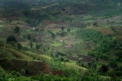 Valle verde, Mandu, la India Imagen de archivo libre de regalías