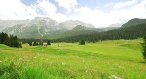 Valle verde in montagne delle dolomia di estate Fotografia Stock Libera da Diritti