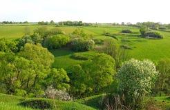 Valle verde nella sera di maggio immagini stock