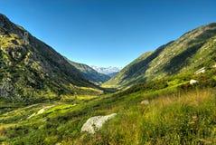 Valle verde nelle alpi svizzere Fotografie Stock