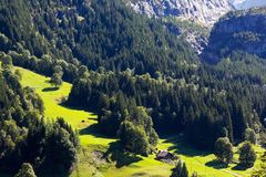 Valle verde ocultado en el bosque imágenes de archivo libres de regalías