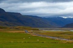 Valle verde y cielo cubierto en Islandia Fotografía de archivo