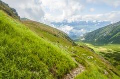 Valle verde y ladera Imagen de archivo libre de regalías