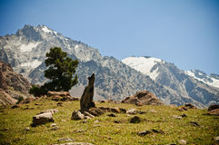 Valle verde y montañas Fotografía de archivo libre de regalías