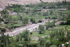 Valle vicino al monastero di Tingmosgang, Ladakh, India Fotografie Stock