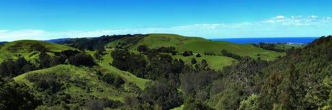 Valle vicino alla grande strada dell'oceano in Australia Fotografia Stock Libera da Diritti