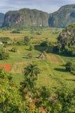 Valle Vinales nell'ovest di Cuba Fotografia Stock Libera da Diritti