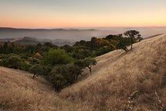Valle y árboles en la puesta del sol Foto de archivo