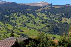 Valle y casas residenciales situados entre árboles Fotos de archivo
