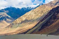 Valle y sus contrastes, Ladakh, Himalaya, la India de Nubra imagenes de archivo