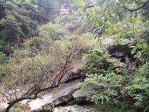 vallei stock afbeeldingen