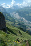 Vallei in Alpen Lauterbrunnen Stock Foto
