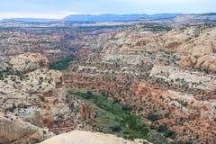 Vallei bij Grote Trap in Escalante Nationaal Monument Utah de V.S. Royalty-vrije Stock Foto's