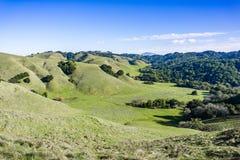 Vallei in Briones Regionaal Park; Zet Diablo op de achtergrond op, de baaigebied van de Contracosta-provincie, Oost-San Francisco royalty-vrije stock foto